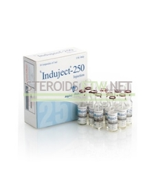 Induject Sustanon 250 Alpha Pharma