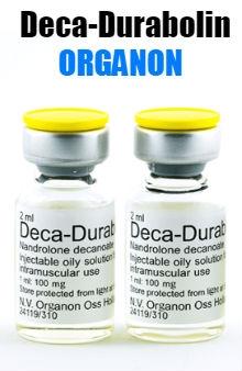 Deca-Durabolin Holland Organon